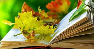 Autumn Literature Days