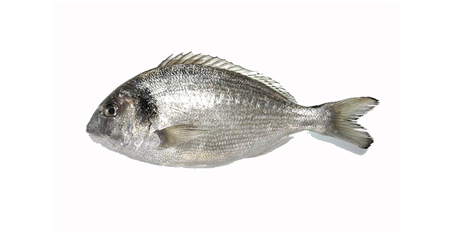 Sea bream (in paper parcel)